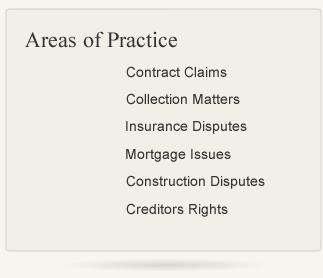 Area of Law Practice
